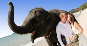 Secular Weddings in Thailand