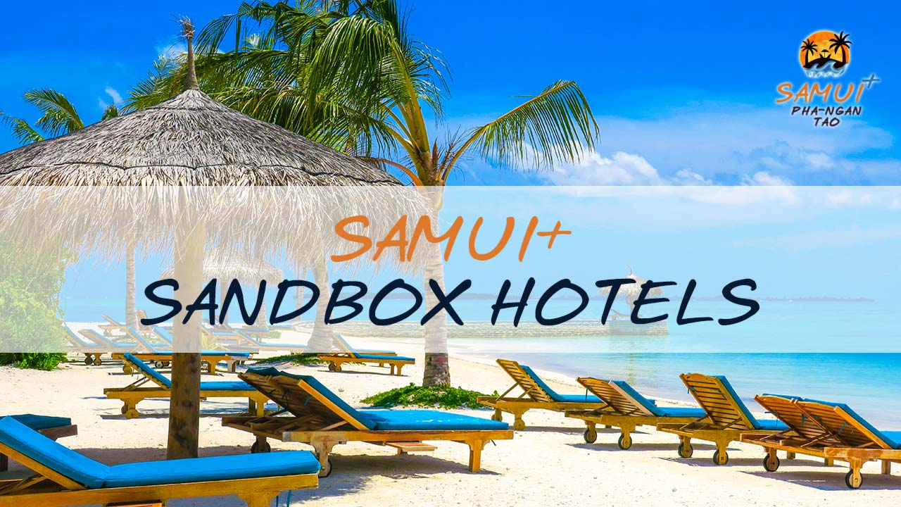 Samui Plus Sandbox Hotels